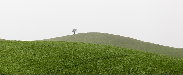 colina que transmite felicidad