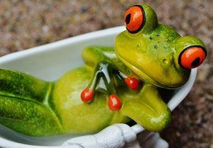 parábola de la rana hervida en la consulta de psicología