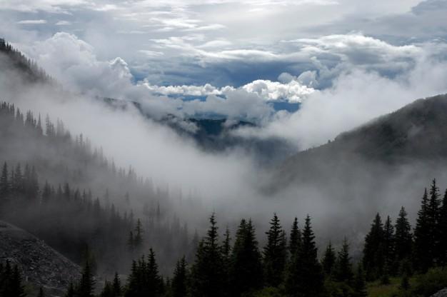 paisaje-brumoso-y-nublado_426-19314816