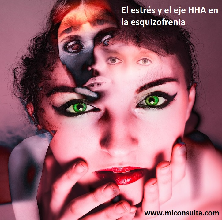 El estrés y el eje hipotalámico-hipofisario-adrenal en la esquizofrenia